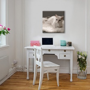 Canvas schilderij van een poes in een woonkamer
